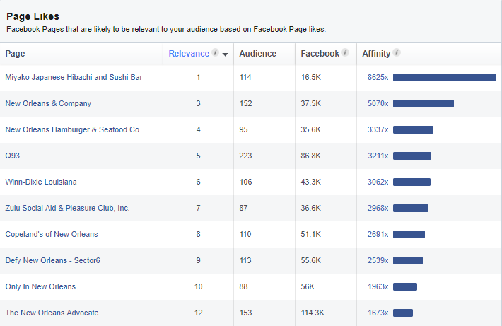 Facebook Audience Insights Research